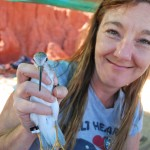 Kath Southwell and a Chinese-banded Terek Sandpiper